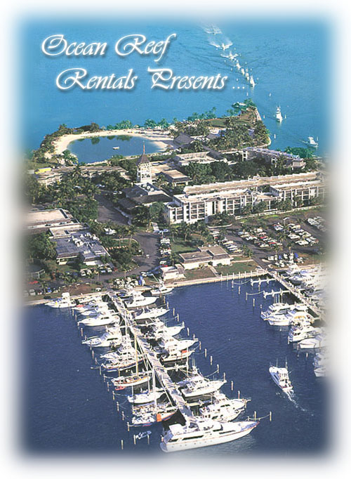 View of Ocean Reef  Club Marina